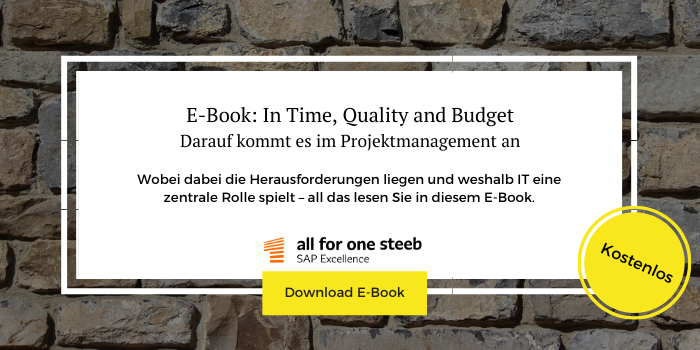 "Zum Download des kostenlosen E-Books ""In Time, Quality and Budget"""