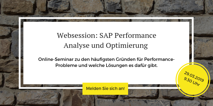 """Anmeldung zur kostenlosen Websession """"SAP Performance"""""""