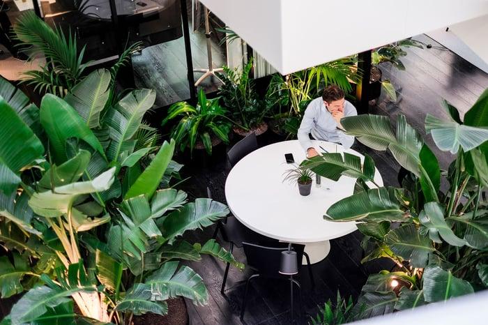 Im Atrium des Edge Olympic lässt es sich schön grün leben und arbeiten